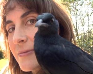 Animal Communicator Bird 1 J